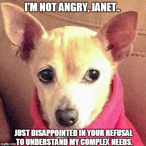 I'M NOT ANGRY, JANET.. JUST DISAPPOINTED IN YOUR REFUSAL TO UNDERSTAND MY COMPLEX NEEDS. | image tagged in disappointed dog | made w/ Imgflip meme maker