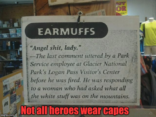 Ask a stupid question, get a wise ass answer.  | Not all heroes wear capes | image tagged in funny signs,snow,angel,shitstorm | made w/ Imgflip meme maker