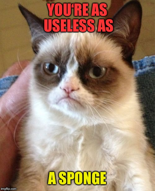 Grumpy Cat Meme | YOU'RE AS USELESS AS A SPONGE | image tagged in memes,grumpy cat | made w/ Imgflip meme maker