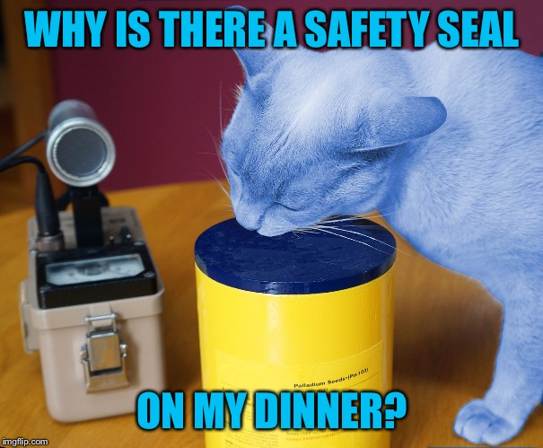 RayCat eating | WHY IS THERE A SAFETY SEAL ON MY DINNER? | image tagged in raycat eating | made w/ Imgflip meme maker