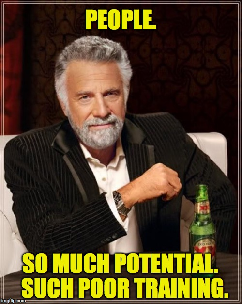 The Most Interesting Man In The World Meme | PEOPLE. SO MUCH POTENTIAL.  SUCH POOR TRAINING. | image tagged in memes,the most interesting man in the world | made w/ Imgflip meme maker