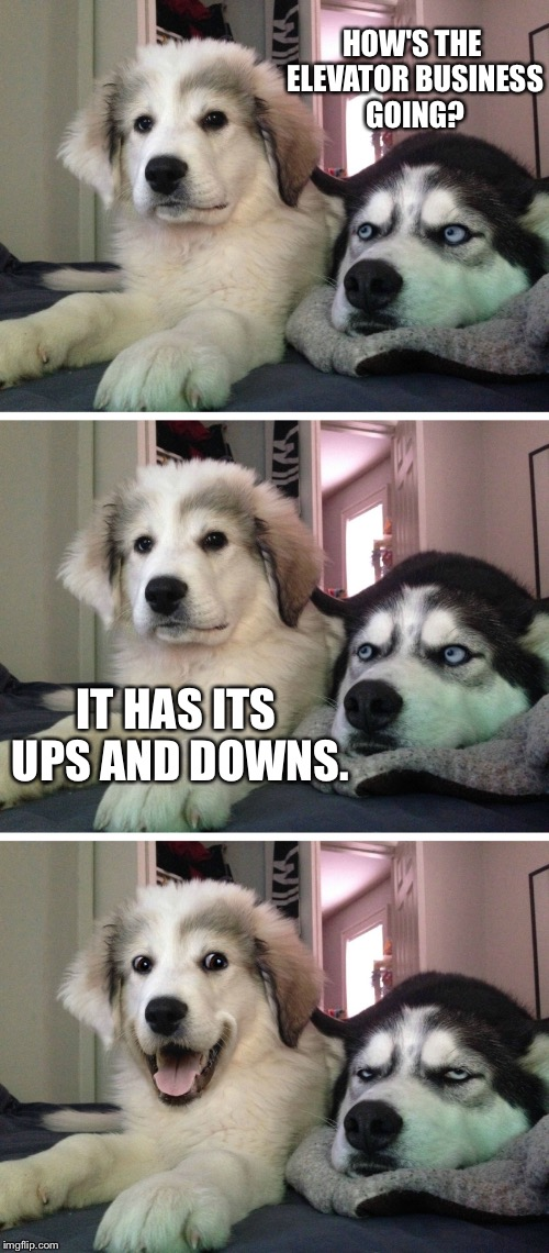 Bad pun dogs | HOW'S THE ELEVATOR BUSINESS GOING? IT HAS ITS UPS AND DOWNS. | image tagged in bad pun dogs,memes | made w/ Imgflip meme maker