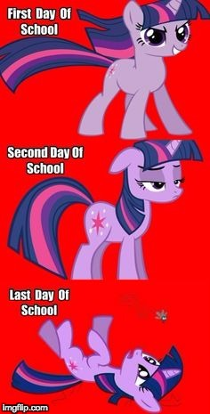 True! | image tagged in memes,school,twilight sparkle | made w/ Imgflip meme maker