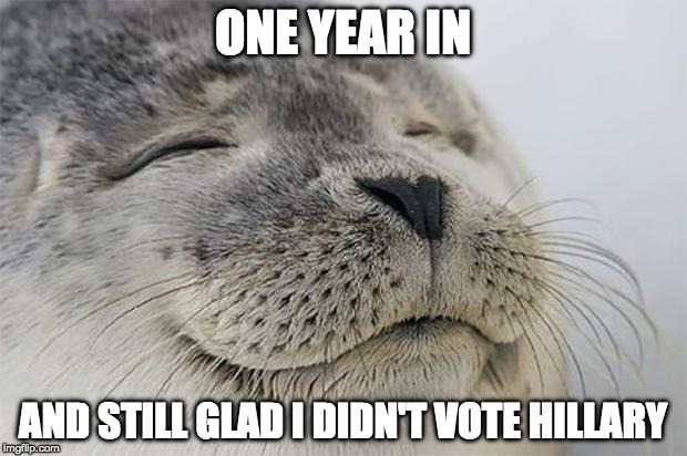 Trump 2020 | ONE YEAR IN AND STILL GLAD I DIDN'T VOTE HILLARY | image tagged in awesome feeling seal,donald trump,bernie sanders,hillary clinton,not my president | made w/ Imgflip meme maker