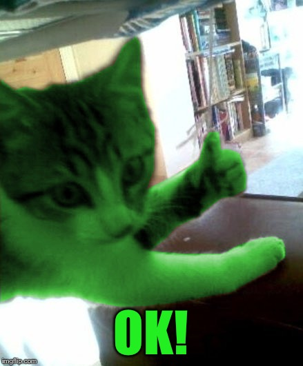thumbs up RayCat | OK! | image tagged in thumbs up raycat | made w/ Imgflip meme maker