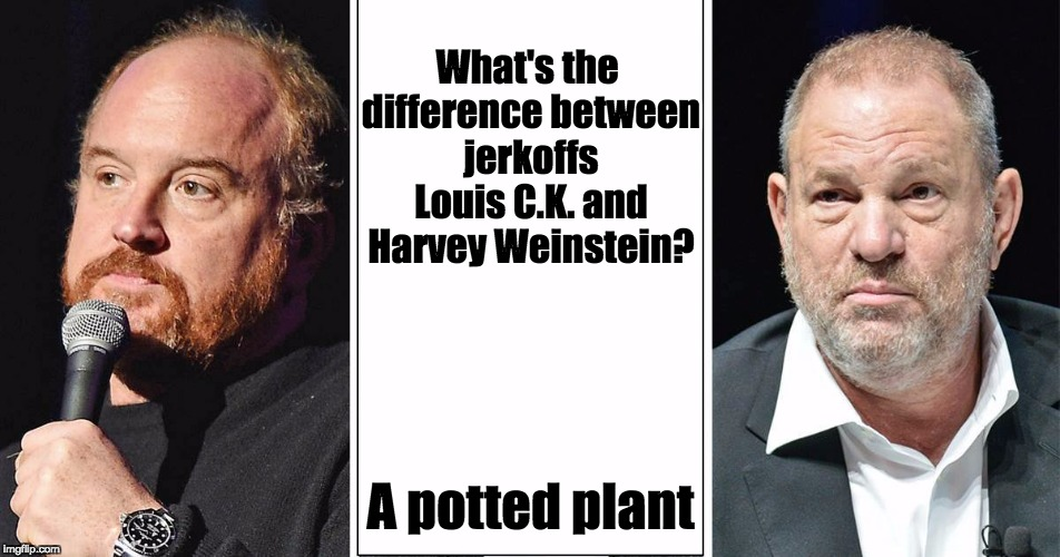 Jerkoffs C.K. and Weinstein | What's the difference between jerkoffs Louis C.K. and Harvey Weinstein? A potted plant | image tagged in louis ck,harvey weinstein,jerking off,potted plant,scandal,masturbation | made w/ Imgflip meme maker