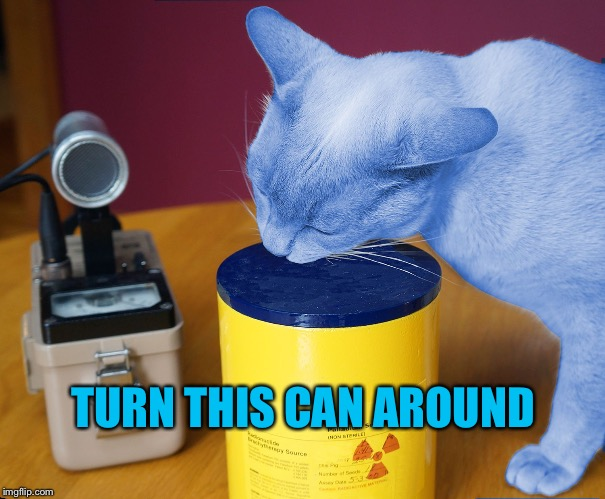 RayCat eating | TURN THIS CAN AROUND | image tagged in raycat eating | made w/ Imgflip meme maker