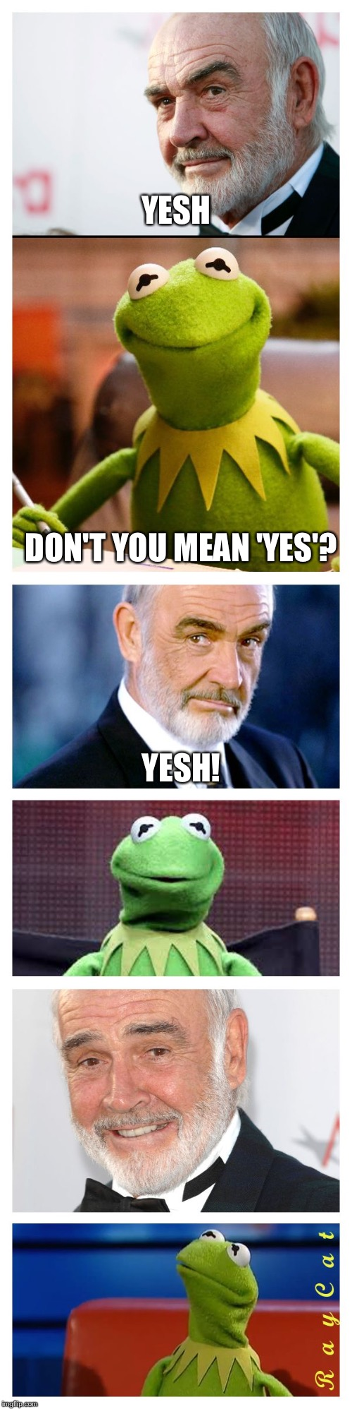 Sean and Kermit | YESH DON'T YOU MEAN 'YES'? YESH! | image tagged in sean and kermit | made w/ Imgflip meme maker