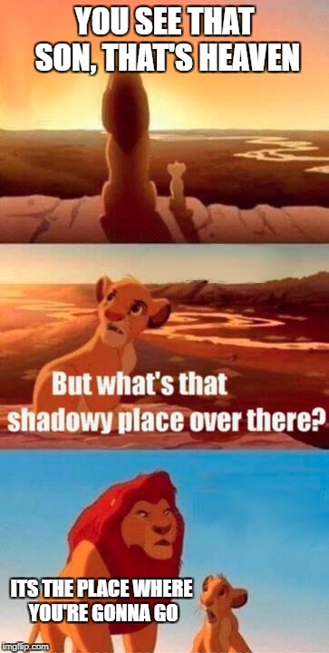 Simba Shadowy Place Meme | YOU SEE THAT SON, THAT'S HEAVEN ITS THE PLACE WHERE YOU'RE GONNA GO | image tagged in memes,simba shadowy place | made w/ Imgflip meme maker