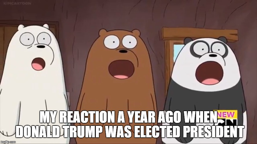 We Blown Bears | MY REACTION A YEAR AGO WHEN DONALD TRUMP WAS ELECTED PRESIDENT | image tagged in we blown bears,donald trump | made w/ Imgflip meme maker