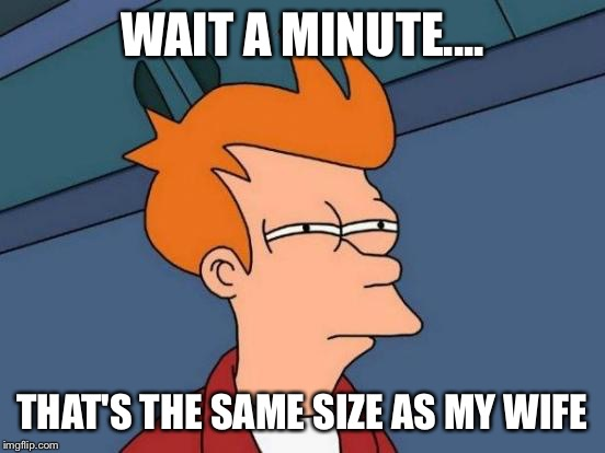 Futurama Fry Meme | WAIT A MINUTE.... THAT'S THE SAME SIZE AS MY WIFE | image tagged in memes,futurama fry | made w/ Imgflip meme maker