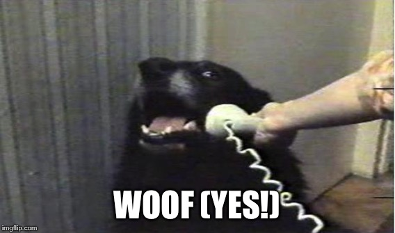 WOOF (YES!) | made w/ Imgflip meme maker