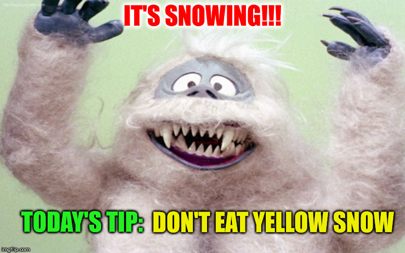 Looked out the window and it's snowing. I think this will be a harsh winter | IT'S SNOWING!!! TODAY'S TIP: DON'T EAT YELLOW SNOW | image tagged in snow,abominable snowman,winter advice | made w/ Imgflip meme maker