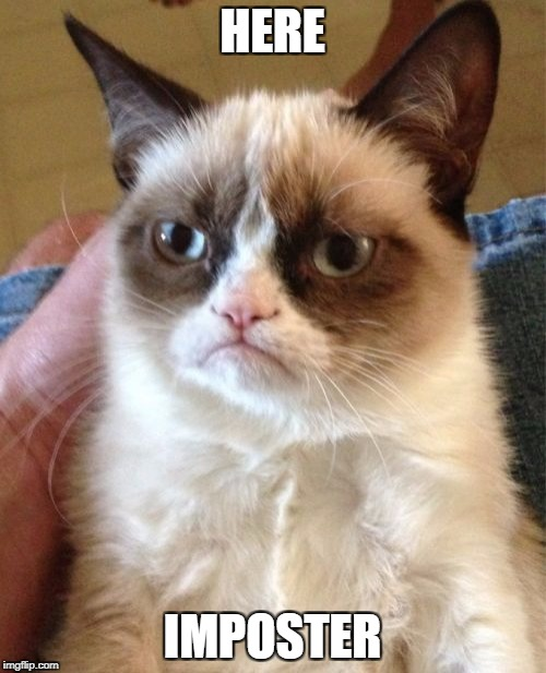 Grumpy Cat Meme | HERE IMPOSTER | image tagged in memes,grumpy cat | made w/ Imgflip meme maker