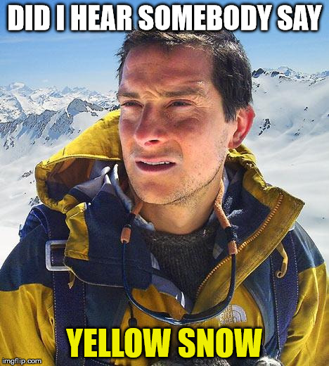 Bear Gryls knows his snow | DID I HEAR SOMEBODY SAY YELLOW SNOW | image tagged in bear gryls,yellow snow | made w/ Imgflip meme maker