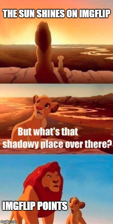 Why Do We Have 'Em? | THE SUN SHINES ON IMGFLIP IMGFLIP POINTS | image tagged in memes,simba shadowy place,imgflip,funny,imgflip points,useless | made w/ Imgflip meme maker
