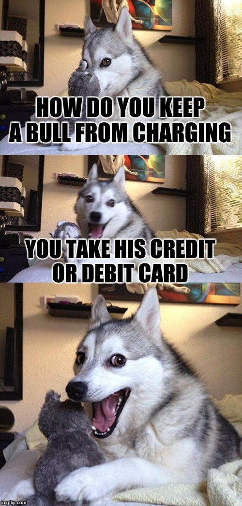 Bad Pun Dog Meme | HOW DO YOU KEEP A BULL FROM CHARGING YOU TAKE HIS CREDIT OR DEBIT CARD | image tagged in memes,bad pun dog,credit cards | made w/ Imgflip meme maker