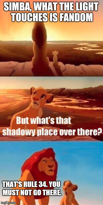 Shadowy Place of Fandom | SIMBA, WHAT THE LIGHT TOUCHES IS FANDOM THAT'S RULE 34. YOU MUST NOT GO THERE. | image tagged in memes,simba shadowy place | made w/ Imgflip meme maker