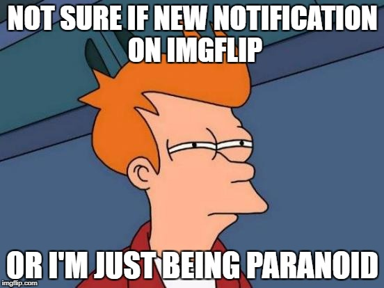 Futurama Fry Meme | NOT SURE IF NEW NOTIFICATION ON IMGFLIP OR I'M JUST BEING PARANOID | image tagged in memes,futurama fry | made w/ Imgflip meme maker