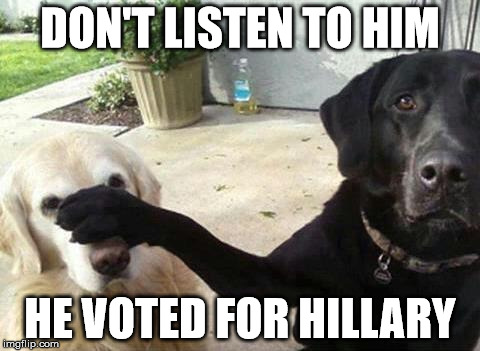 Dogs | DON'T LISTEN TO HIM HE VOTED FOR HILLARY | image tagged in dogs | made w/ Imgflip meme maker