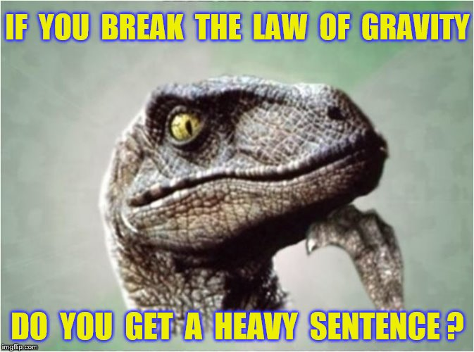 Philosoraptor | IF  YOU  BREAK  THE  LAW  OF  GRAVITY DO  YOU  GET  A  HEAVY  SENTENCE ? | image tagged in memes,law of gravity,philosoraptor,funny | made w/ Imgflip meme maker