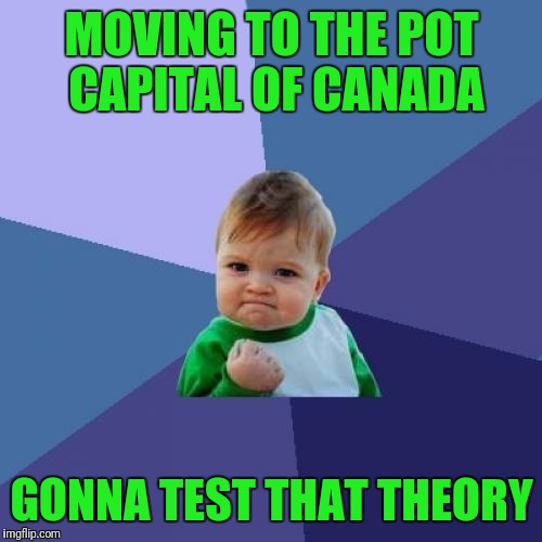 Success Kid Meme | MOVING TO THE POT CAPITAL OF CANADA GONNA TEST THAT THEORY | image tagged in memes,success kid | made w/ Imgflip meme maker