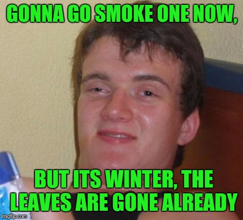 10 Guy Meme | GONNA GO SMOKE ONE NOW, BUT ITS WINTER, THE LEAVES ARE GONE ALREADY | image tagged in memes,10 guy | made w/ Imgflip meme maker