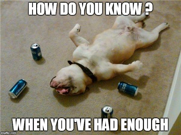 drunk dog | HOW DO YOU KNOW ? WHEN YOU'VE HAD ENOUGH | image tagged in drunk dog | made w/ Imgflip meme maker