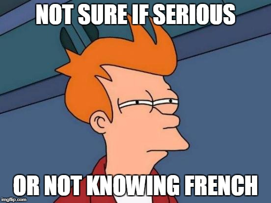Futurama Fry Meme | NOT SURE IF SERIOUS OR NOT KNOWING FRENCH | image tagged in memes,futurama fry | made w/ Imgflip meme maker