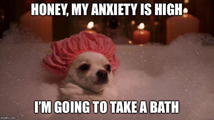 Chihuahua Bubble Bath | HONEY, MY ANXIETY IS HIGH I'M GOING TO TAKE A BATH | image tagged in chihuahua bubble bath | made w/ Imgflip meme maker