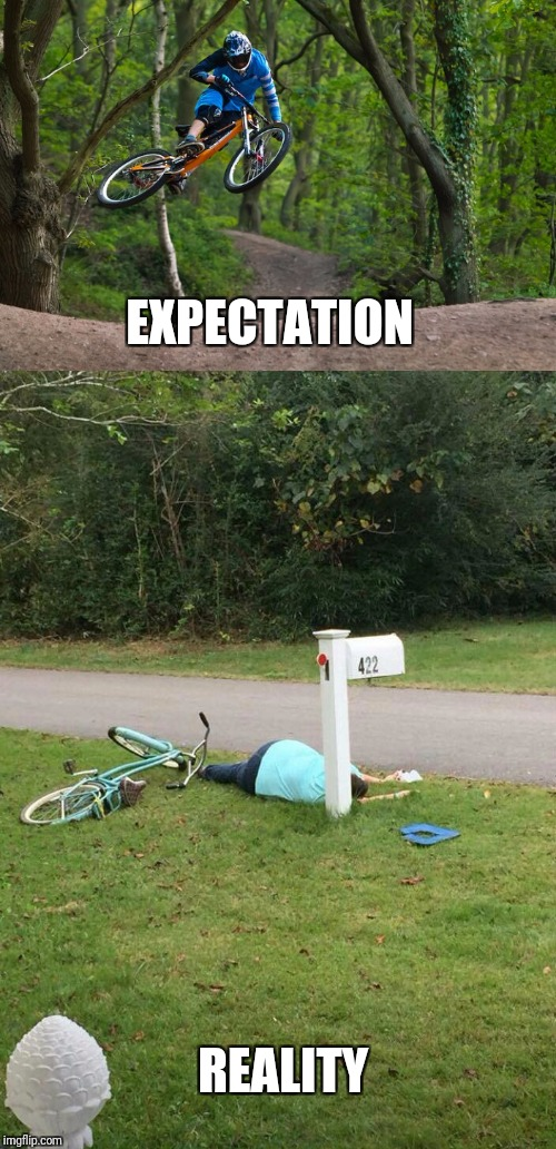 EXPECTATION REALITY | image tagged in funny memes,expectation vs reality,falling down | made w/ Imgflip meme maker