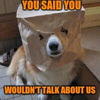 I'm not your dog | YOU SAID YOU WOULDN'T TALK ABOUT US | image tagged in i'm not your dog | made w/ Imgflip meme maker