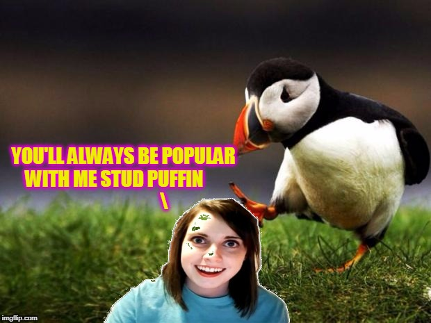 YOU'LL ALWAYS BE POPULAR WITH ME STUD PUFFIN | made w/ Imgflip meme maker