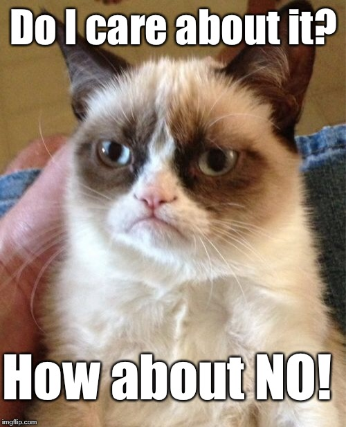 Grumpy Cat Meme | Do I care about it? How about NO! | image tagged in memes,grumpy cat | made w/ Imgflip meme maker