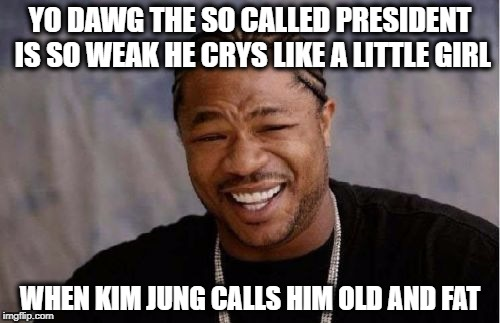 Yo Dawg Heard You | YO DAWG THE SO CALLED PRESIDENT IS SO WEAK HE CRYS LIKE A LITTLE GIRL WHEN KIM JUNG CALLS HIM OLD AND FAT | image tagged in memes,yo dawg heard you | made w/ Imgflip meme maker
