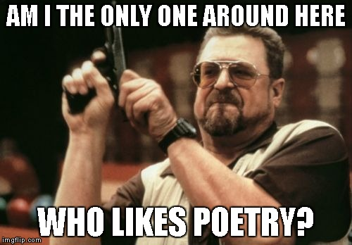 Am I The Only One Around Here Meme | AM I THE ONLY ONE AROUND HERE WHO LIKES POETRY? | image tagged in memes,am i the only one around here | made w/ Imgflip meme maker