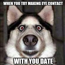 WHEN YOU TRY MAKING EYE CONTACT WITH YOU DATE | image tagged in eyecontact dog | made w/ Imgflip meme maker