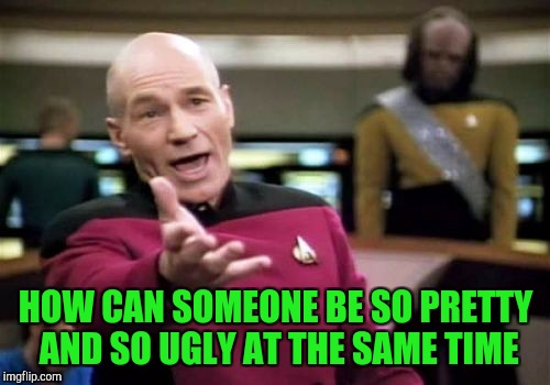 Picard Wtf Meme | HOW CAN SOMEONE BE SO PRETTY AND SO UGLY AT THE SAME TIME | image tagged in memes,picard wtf | made w/ Imgflip meme maker