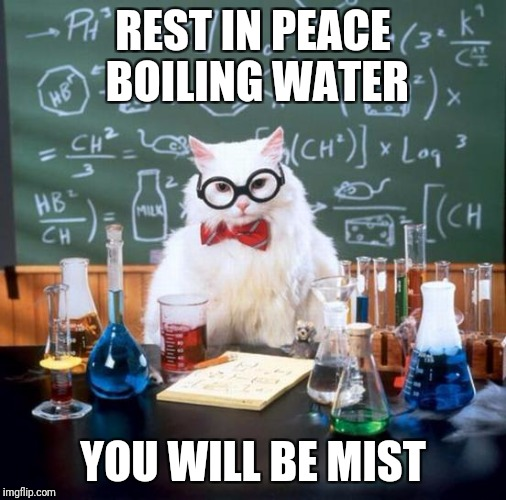 Chemistry Cat | REST IN PEACE BOILING WATER YOU WILL BE MIST | image tagged in memes,chemistry cat | made w/ Imgflip meme maker