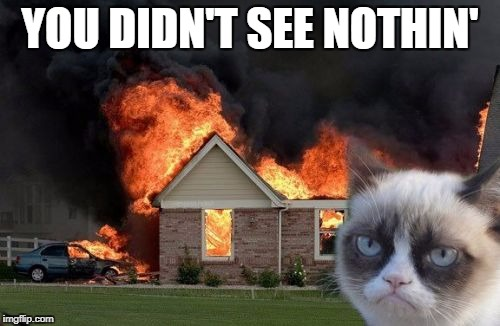 Burn Kitty Meme | YOU DIDN'T SEE NOTHIN' | image tagged in memes,burn kitty,grumpy cat | made w/ Imgflip meme maker