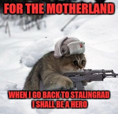 russian cat | FOR THE MOTHERLAND WHEN I GO BACK TO STALINGRAD I SHALL BE A HERO | image tagged in russian cat | made w/ Imgflip meme maker
