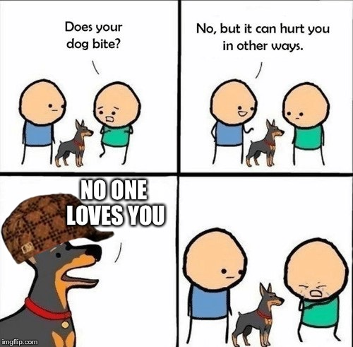 does your dog bite | NO ONE LOVES YOU | image tagged in does your dog bite,scumbag | made w/ Imgflip meme maker