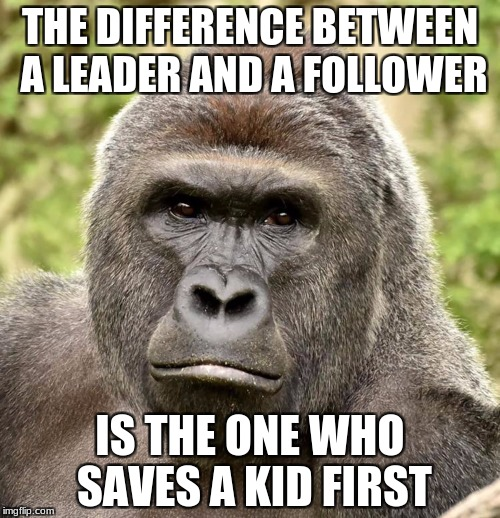 THE DIFFERENCE BETWEEN A LEADER AND A FOLLOWER IS THE ONE WHO SAVES A KID FIRST | image tagged in harambe | made w/ Imgflip meme maker