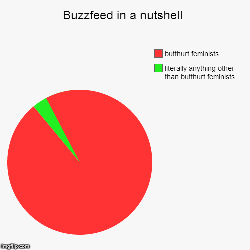Buzzfeed in a nutshell | literally anything other than butthurt feminists, butthurt feminists | image tagged in funny,pie charts | made w/ Imgflip pie chart maker