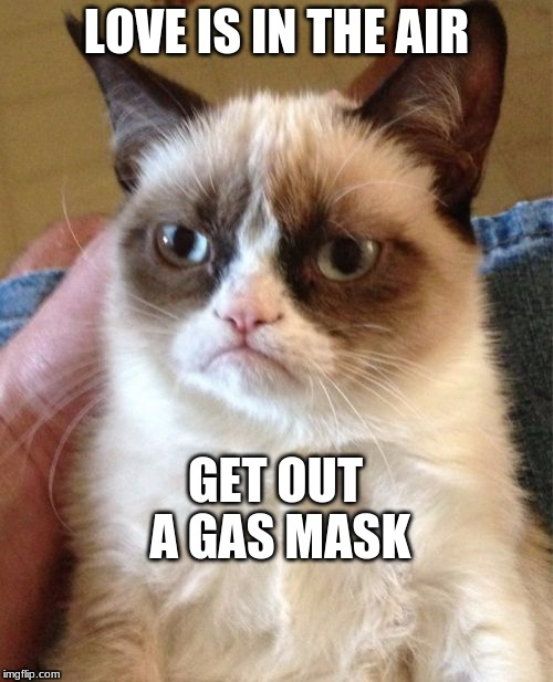 Grumpy Cat Meme | LOVE IS IN THE AIR GET OUT A GAS MASK | image tagged in memes,grumpy cat | made w/ Imgflip meme maker