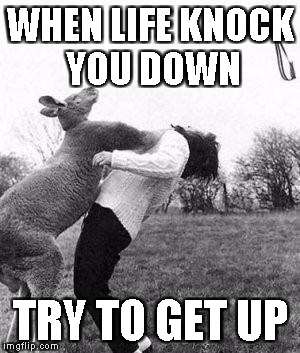 WHEN LIFE KNOCK YOU DOWN TRY TO GET UP | image tagged in kangaroo knockout | made w/ Imgflip meme maker
