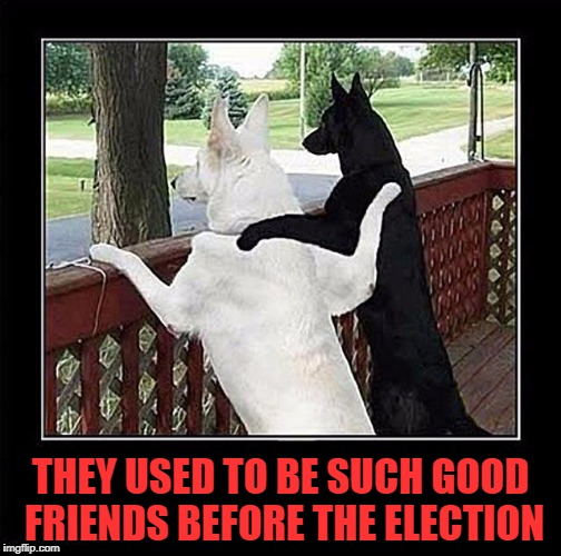 THEY USED TO BE SUCH GOOD FRIENDS BEFORE THE ELECTION | made w/ Imgflip meme maker