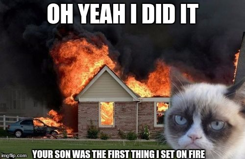 Burn Kitty Meme | OH YEAH I DID IT YOUR SON WAS THE FIRST THING I SET ON FIRE | image tagged in memes,burn kitty,grumpy cat | made w/ Imgflip meme maker