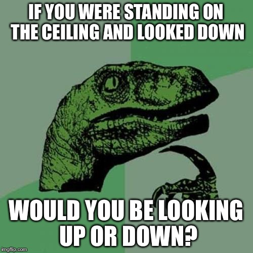 Philosoraptor Meme | IF YOU WERE STANDING ON THE CEILING AND LOOKED DOWN WOULD YOU BE LOOKING UP OR DOWN? | image tagged in memes,philosoraptor | made w/ Imgflip meme maker