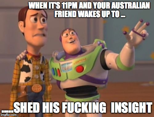 X, X Everywhere Meme | WHEN IT'S 11PM AND YOUR AUSTRALIAN FRIEND WAKES UP TO ... .....SHED HIS F**KING  INSIGHT | image tagged in memes,x x everywhere | made w/ Imgflip meme maker